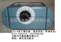 电子调压器5A