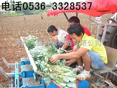 溫室移栽機,西紅柿移栽機,番茄移栽機,玉米苗移栽機