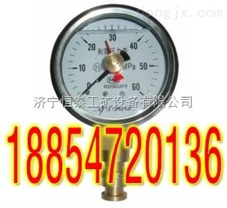 BZY双针耐震压力表