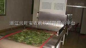 供应齐协QX金银花微波干燥机/金银花微波杀青机
