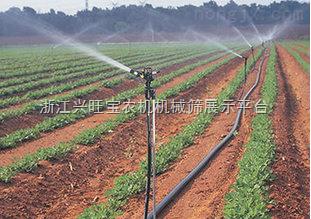 供应农用侧翼迷宫滴灌带