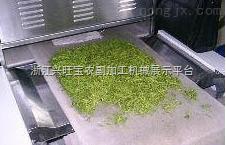 供应舜天烘干设备长 金银花烘干机 金银花杀青机 烘干机烘干