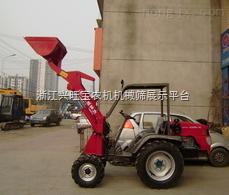 供應2013新款裝載機 輪式裝載機 隨車載貨型吊車 液壓鏟車 小鏟車山售型號