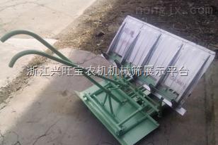 供应隆辉水稻插秧机|插秧机生产商|新型插秧机|插秧机报价|优