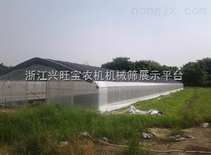 供应泮禄多种温室加温设备取暖设备  花卉供暖设备 温室暖风机 大棚加温设备
