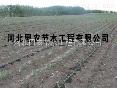 通用型河北国农小麦滴灌管滴灌带