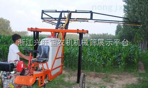 车载喷药机,大型玉米喷药机,树木喷药机,供应 旱田植保机械|打药机喷药机|悬挂喷雾机|