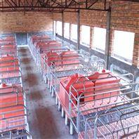 猪舍常用的母猪产床价格 猪用分娩床专业生产批发