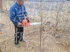 手提式移栽机 汽油树木移植机 汽油起苗机
