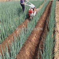 葡萄埋藤机 大棚草莓起垄机 大葱开沟培土机