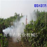 厂家直销甘肃农田烟雾机 蔬菜大棚专用打药弥雾机