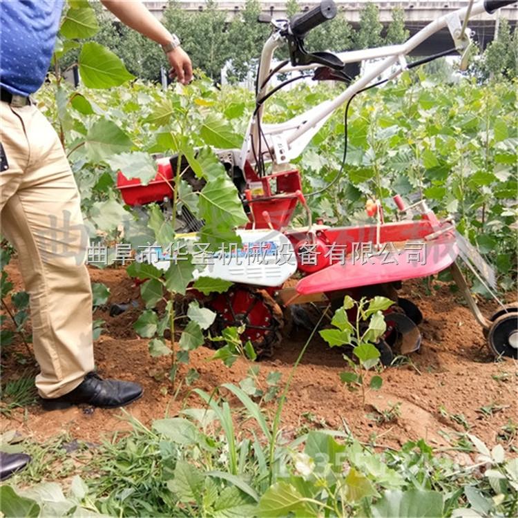 小型开沟培土机 大葱甘蔗开沟机