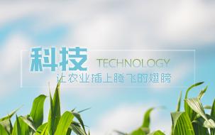 科技,让农业插上腾飞的翅膀