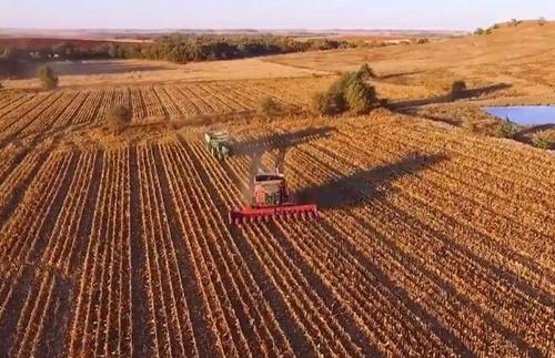 一个美国农场2016年的秋收