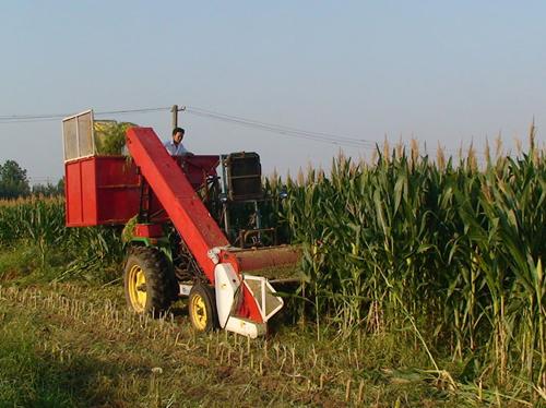 松山区引进秸秆回收型玉米收割机